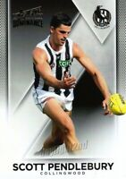 ✺New✺ 2019 COLLINGWOOD MAGPIES AFL Card SCOTT PENDLEBURY Dominance