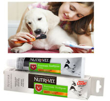 Dog Toothpaste Dental Care Dogs Hygiene Clean Teeth Pet No Foam Chicken Flavor