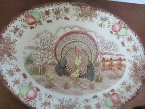 """Sweet 12 1/4""""x16"""" oval Turkey platter The condition is great Perfect for holiday"""