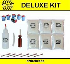 E-Z Tire Balance Bead Deluxe Kit 6x8 oz(48 total)Applicator/Filtered Cores/Caps