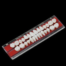 22# Alloy Pin Porcelain Tooth Dental Materials Colors Shade Guide Upper Teeth