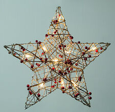 """19"""" Pre-Lit Indoor/Outdoor Champagne Gold Star For Holiday and Christmas Doors"""