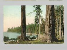 pk36765:Postcard-View in Stanley Park,Vancouver,British Columbia
