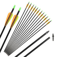 6/12pcs 30'' Fiberglass Arrows Screw-in Point Archery Hunting Compound Bow