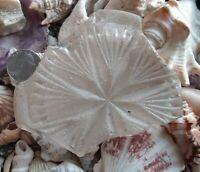 GENUINE BEACH/SEA GLASS BEAUTIFUL VINTAGE STAR PATTERN LARGE BOTTOM PIECE!!
