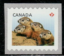 Canada #2603 Baby Wildlife Definitive From Large Coil MNH