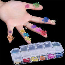 F 3D Decoration Real Dry Dried Flower for UV Gel Acrylic Nail Art Tips 10 Colors