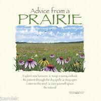 Gildan T-shirt Prairie Advice Nature Unisex Natural 100% Cotton S L XL 2XL
