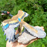 Action Figure Model Archaeopteryx Dinosaur Toy Best Gift Dino Prehistoric Figure