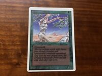 Misprint DOUBLE-Printed Shanodin Dryads Revised Very Noticeable MTG Magic Card