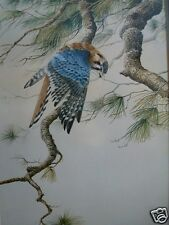 KESTREL print by Christopher Walden Realistic Wildlife & Landscape Paintings ##