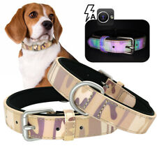 Fluorescent Dog Collar D-ring Soft Padded for Small Large Dogs Labrador Pitbull
