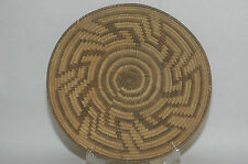 "Antique Pima Bear Grass,devil claw & Yucca  Design Basket  10"" diameter"