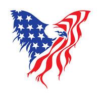 American Flag Eagle shirt Red White Blue USA America patriot U.S.A. t-shirt