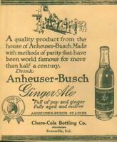 Advertising Newspaper Anheuser Busch Ginger Ale Chero-Cola Prohibition 1923