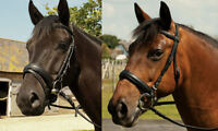 Heritage Padded English Leather Comfort Bridle Pony, Cob, Full