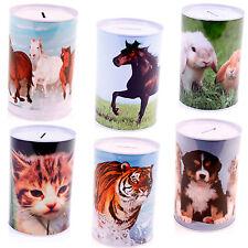 Spardose Tiermotive Katze Hund Pferd Tiger verschiedene Motive wählbar