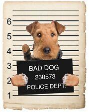 Airedale Terrier Mugshot Bad Dog Fridge refrigerator Car Magnet Bumper Sticker