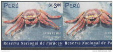 O) 2002 Peru, Paracas Nature Reserve, Crustacean - Grapsus- Sea Spider, Imperfor