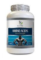muscle builder - AMINO ACIDS 2200MG 1B - amino acids bcaa