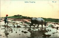 Vtg Postcard 1910s Rural China - Buffalo Ploughing - SS Picture Pub UNP Tinted