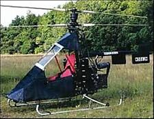 Eagles Perch USA Ultralight Helicopter Desk Dried Wood Model Regular New