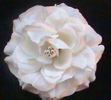 BRIDAL WHITE SILK ROSE FLOWER  CENTER PEARLS HAIR CLIP