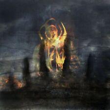 Fen - Carrion Skies CD 2014 atmospheric black metal post-rock Code666