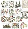 Tim Holtz Wildflowers 661190 Funky Foliage 663087 Garden Greens 661206 Birch