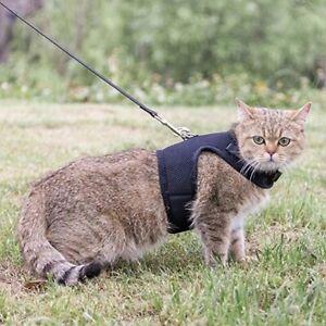 Savannah Cat Harness with Leash Adjustable Soft Mesh Best Walking F1 F2 Maine
