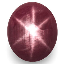 7.80-Carat Unique Glossy Purplish Red Star Ruby from Vietnam