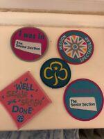 Girl Guiding Senior Section Badge Selection