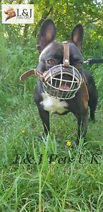 Best Basket Muzzle for French Bulldog | Basket Muzzle for Frenchies
