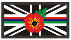 Triple Thin Blue Green Red Line Remembrance Emergency Service Union Jack Badge