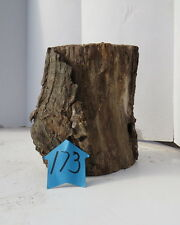 Unique Forest Product, Hollow Log for decoration/terrarium and crafts, #173