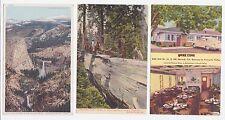 Antique Post Card Lot of 3 Yosemite  Cal.