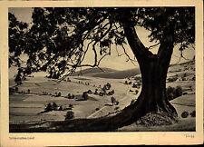 Schlesisches Land Polen 1952 Partie ad. Alten Berg Esche Grunwald 2x4 Posthorn
