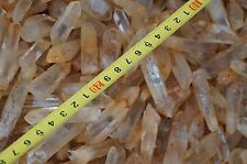 Wholesale prices RARE New Find NATURAL Yellow rabbit hair Crystal Quartz Point
