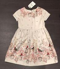 Zara Girls Sz 9-10 Dress NWT$40
