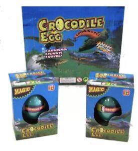 CROCODILE WATCH THEM HATCH AND GROW EGGS novelty growing egg alligator kids toy