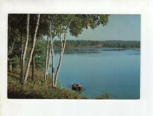 Vintage Post Card - Fishing Fun