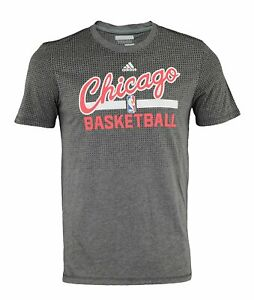 Adidas NBA Men's Chicago Bulls Aeorknit Tee, Gray