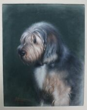 PASTEL PORTRAIT OF A SHEEPDOG