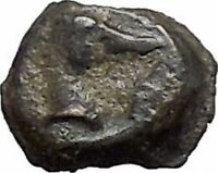EPESUS Ephesos IONIA 405BC Bee Stag's Head Authentic Ancient Greek Coin i48233