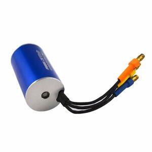Surpass Blue 2445 5400KV/3600/3000KV Brushless Motor for 1/16 RC Car
