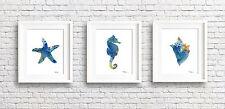 Set of 3 Sea Horse, Sea Shell & Starfish Paintings Bathroom Art Prints by DJR