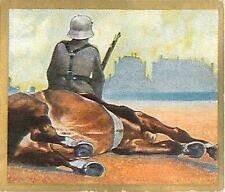 N°119 World War German Riders shot hard Horse Reichswehr Germany WWI 30s CHROMO