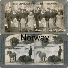 18 Stereoviews Norway Norwegen Christiania  Lot 6