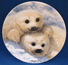 Baby Seals Beauty of Polar Wildlife Plate Royal Grafton England Mike Jackson
