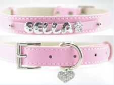 Large Size Dog Collar with personalized name on for 43-53cm neck perimeter